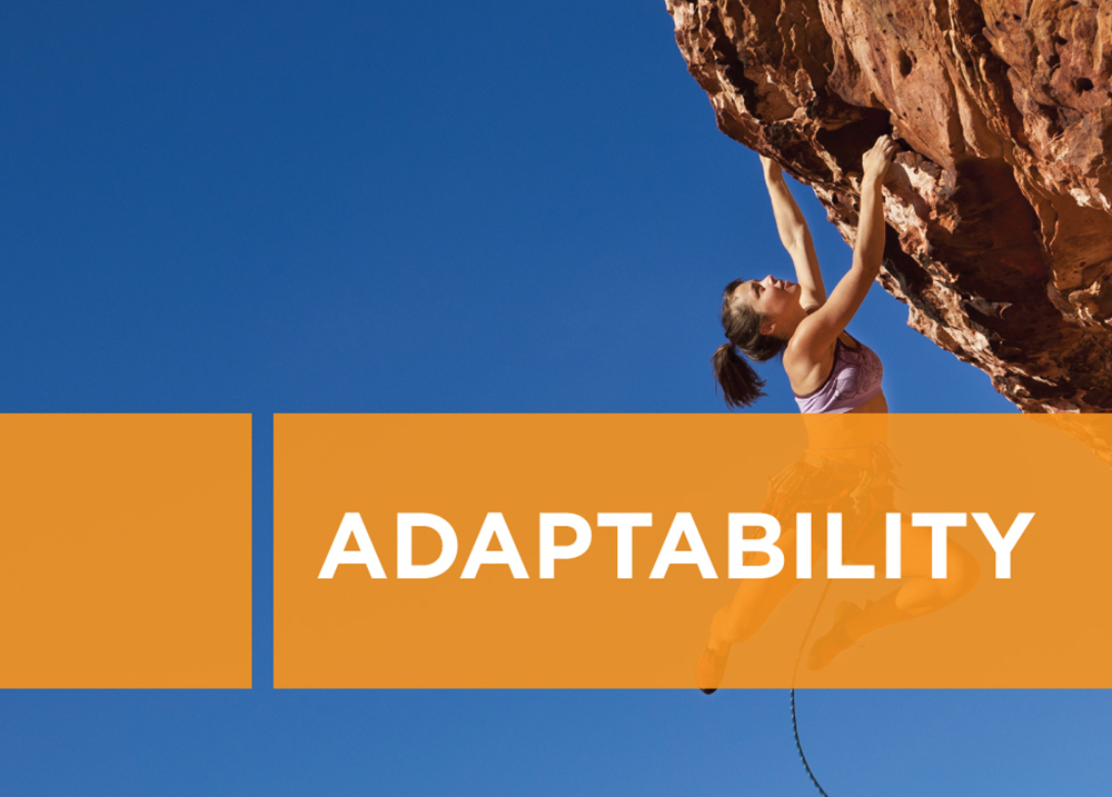 Netiks Values - Adaptability