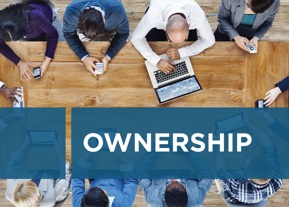 Netiks Values - Ownership